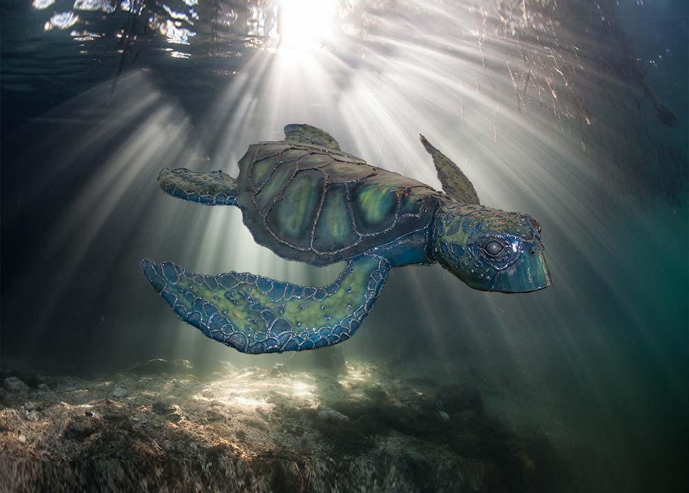 Metal Sculpture Turtle underwater background