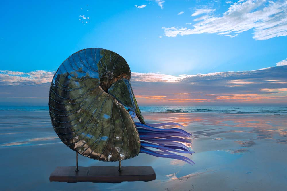 Sculpture Nautilus background at the Beach