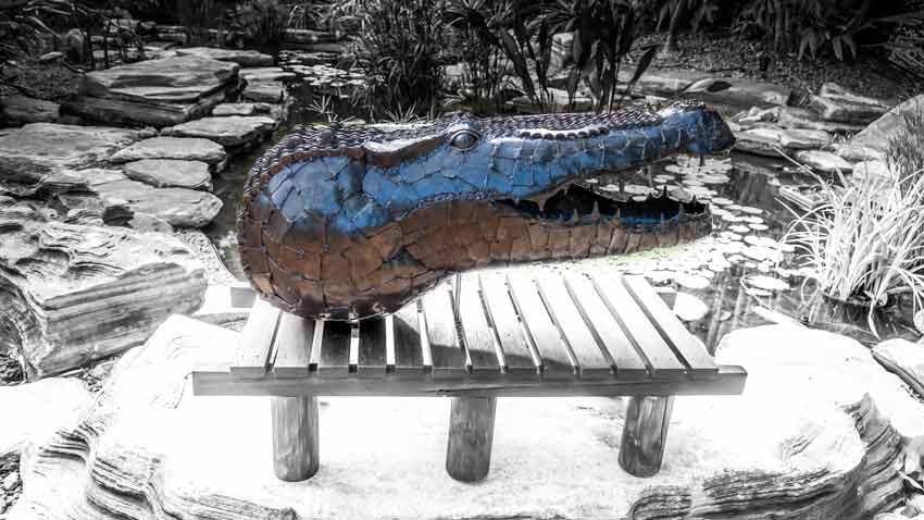 metal sculpture crocodile head background waterhole
